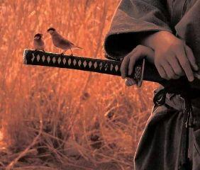 japan samurai katana beautiful