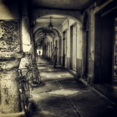 black and white black & white hdr photography vintage