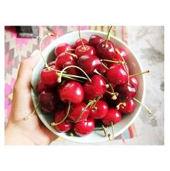 photography cute food colorful cherries