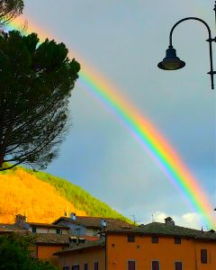colorful emotions nature rainbow