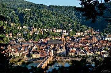neckar travel nature city heidelberg
