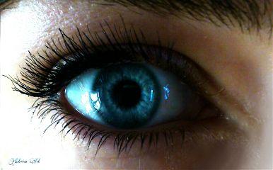 blueeyes lashes eye eyebrow freetoedit