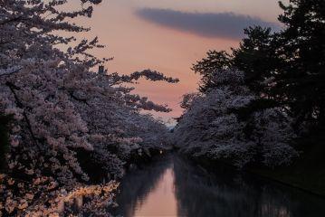 nature love japan